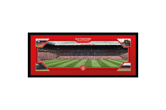 Manchester United FC Old Trafford 30 x 12 Picture (Red)