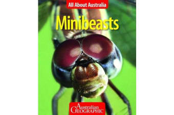 All About Australia - Minibeasts