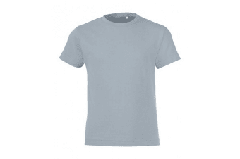SOLS Childrens/Kids Regent Short Sleeve Fitted T-Shirt (Pure Grey) (2 Years)