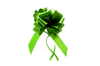 Midwest Ribbons 30mm Decorative Pull Bows (Pack Of 30) (Mint) (One Size)
