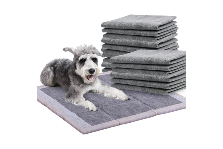 PaWz 400 Pcs 60x60cm Charcoal Pet Puppy Dog Toilet Training Pads Ultra Absorbent  -  400pcs