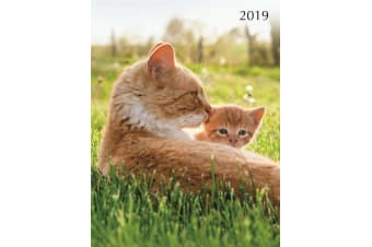 Cats & Kittens 2019 Premium Diary Planner A5 Padded Cover Christmas NewYear Gift