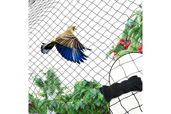 4GSM Commercial Fruit Tree Plant Knitted Anti Bird Netting 5x20m