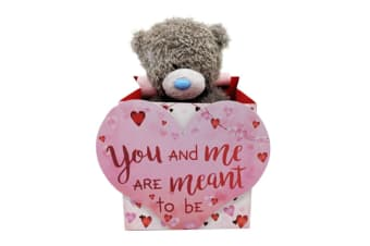 Me to You Valentines Bear in Bag (M5)