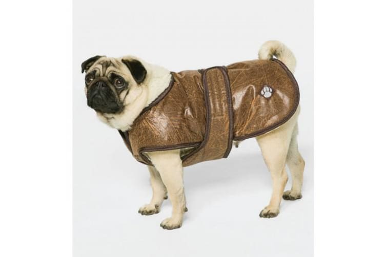 Danish Design Pet Products Waggles Dog Coat (Brown) (75cm)