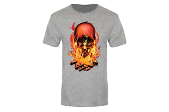 Requiem Collective Mens Hellfire Premium T-Shirt (Grey)