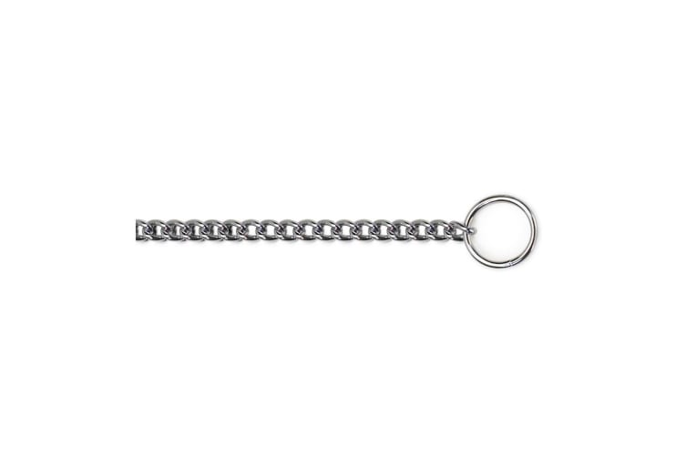 Ancol Pet Products Fine Check Chain Dog Collar (Metal) (40cm (Size 3))