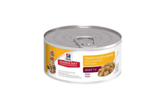 Hills Science Diet Adult Tender Chicken Dinner Cans - 1 Can