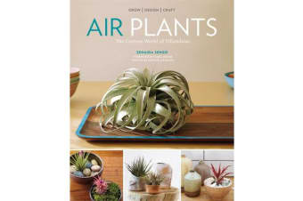 Airplants - the Curious World of Tillandsias