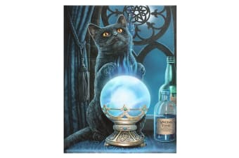 Lisa Parker The Witches Apprentice Canvas (Multicoloured)