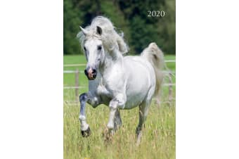 Horses - 2020 Premium Diary Planner A5 Padded Cover Christmas New Year Gift