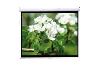 "Loctek MSS2 100"" 4:3 221x16x16cm Manual Projector Screen Self-Lock"