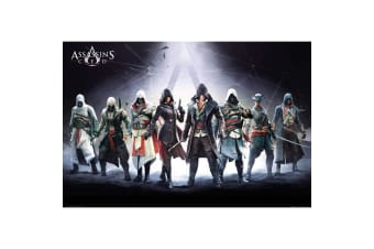 Assassins Creed Protagonist Group Poster (Multicolour)