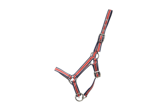 Hy Foal Plus Head Collar (Red/Navy) (One Size)