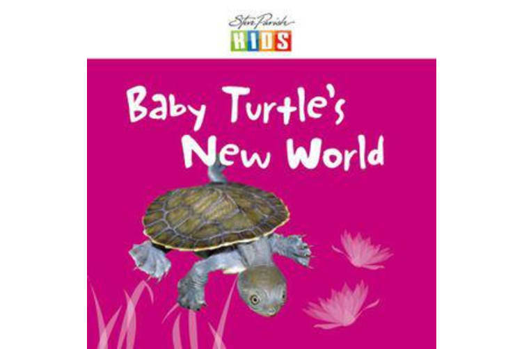 Baby Turtle's New World