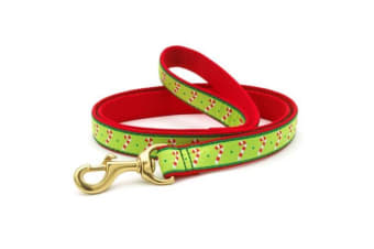 Up Country Candy Cane Lead (Multicoloured)
