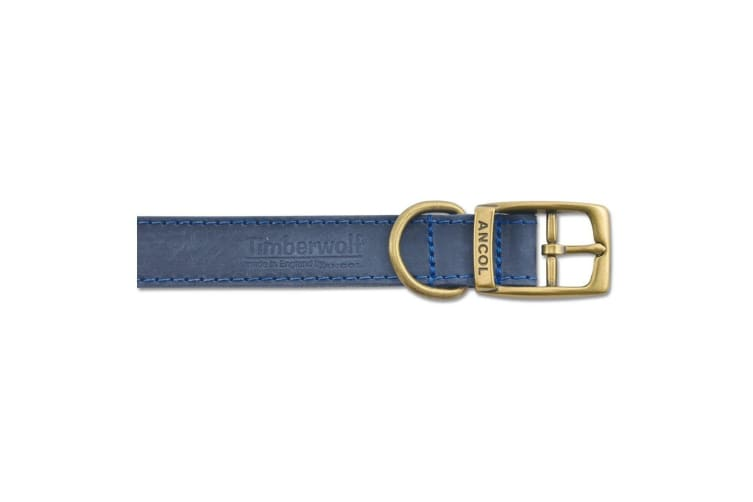 Ancol Timberwolf Leather Pet Collar (Blue) (39-48cm (Size 5))