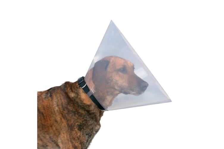 Trixie Protective Collar For Dogs (Transparent) (XS)