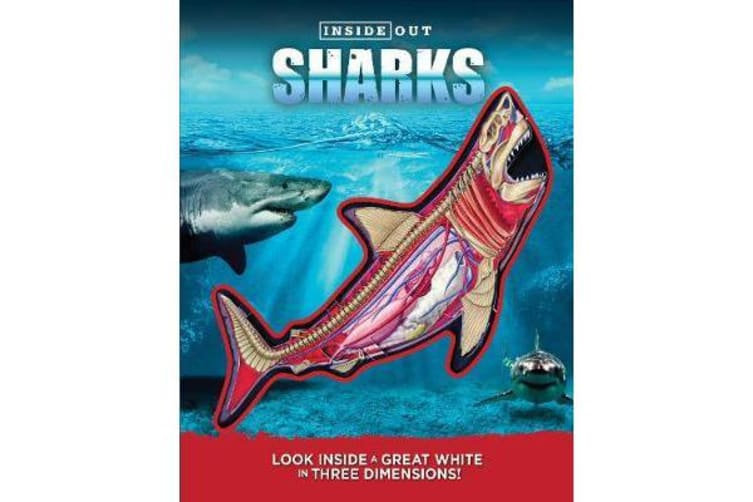 Inside Out Sharks - Look inside a great white in three dimensions!