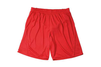 James and Nicholson Childrens/Kids Team Shorts (Red) (L)