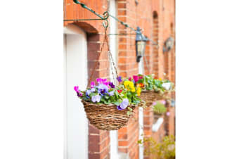Ambassador Rattan Hanging Basket (Brown)