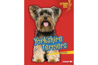 Who's a Good Dog? - Yorkshire Terriers