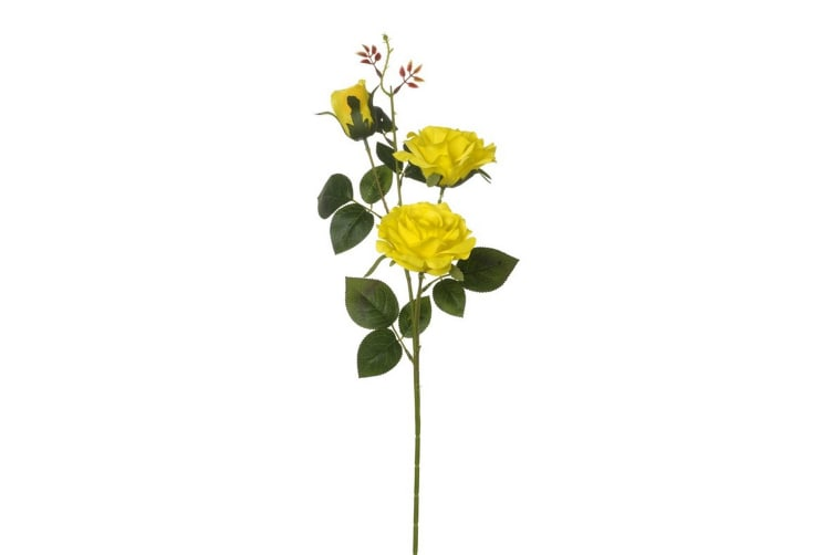 2 Flower Rose (Yellow) (75 x 16cm)