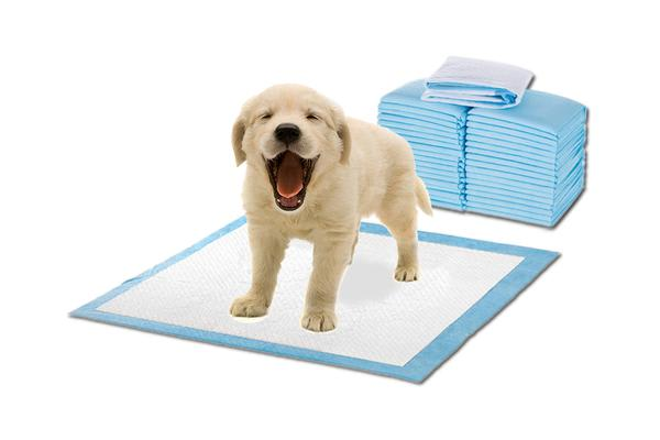 200pcs 60x60cm Puppy Pet Indoor Toilet Training Pads