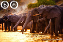 AFRICA: 18 Day Botswana & Victoria Falls Tour Including Flights