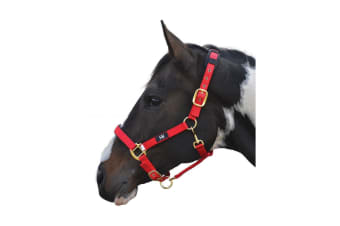 Hy Deluxe Padded Head Collar (Red)