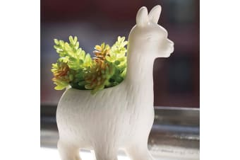 Lloyd The Llama White Ceramic Mini Planter Pot 15cm | Kikkerland