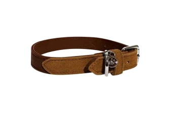 Luxury Leather Dog Collar (Red)