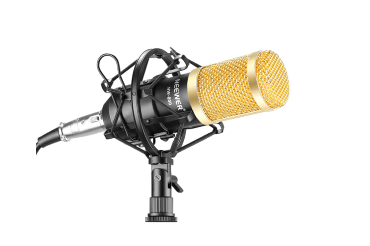 Uni-directional Professional Studio Broadcasting & Recording Condenser Microphone Mic with Shock Mount