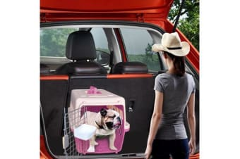 Airline Approve Portable Tote Pet Carrier