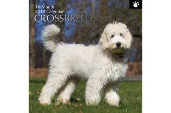 Crossbreeds - NEW 2018 Premium Square Wall Calendar 16 Months New Year Xmas Gift