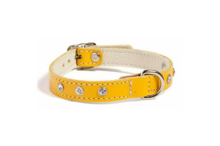 Animal Kingdom Doggy Things Fantasia Leather Dog Collar (Yellow) (30cm)