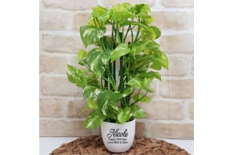 Real Touch Pothos Plant in Personalised Birthday Pot