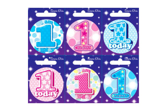 Simon Elvin Various Ages (1-17) Small Badges (Pack Of 6) (Multicoloured) (14)