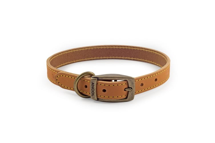 Ancol Pet Products Timberwolf Leather Collar (Mustard) (35-43cm (Size 4))