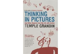 Thinking in Pictures