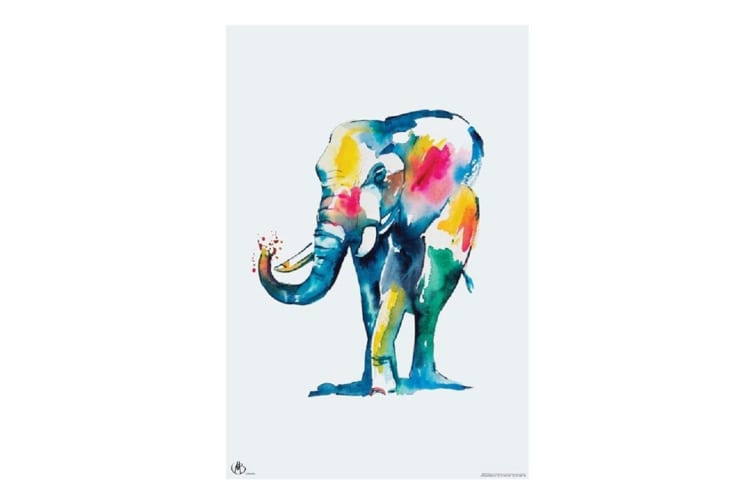 `Watercolour Elephant` By Matteo Poster Ready For Framing 61x91.5cm