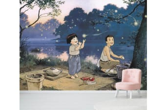 3D Grave Of The Fireflies 022 Anime Wall Murals Woven paper (need glue), XXXL 416cm x 254cm (WxH)(164''x100'')