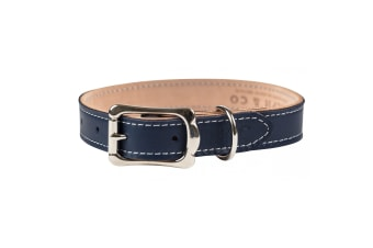 Ralph & Co Leather Dog Collar (Midnight Blue)