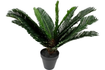 Artificial Cycad Plant Potted