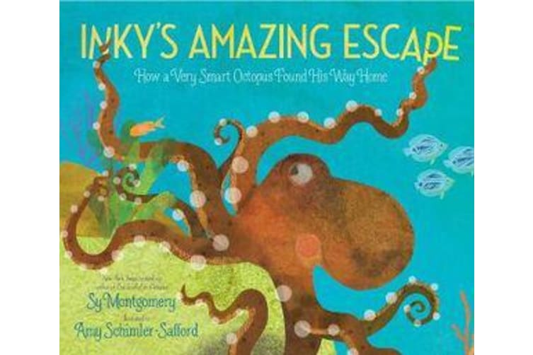 Inky's Amazing Escape - How a Very Smart Octopus Found His Way Home