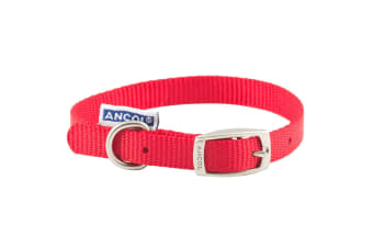 Ancol Pet Products Heritage Buckle Fasten Weatherproof Dog Collar (Red)