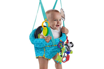 Bright Starts Bounce n Spring Deluxe Door Jolly Jumper w/ Toys/Mirror for Baby