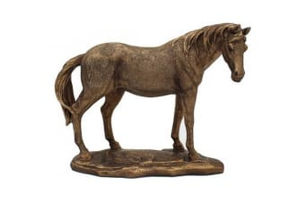 Reflections Bronzed Horse (Bronze) (One Size)