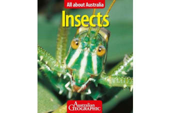 All About Australia - Insects
