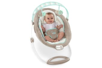 Ingenuity Sampson Vibrating Baby Bouncer
